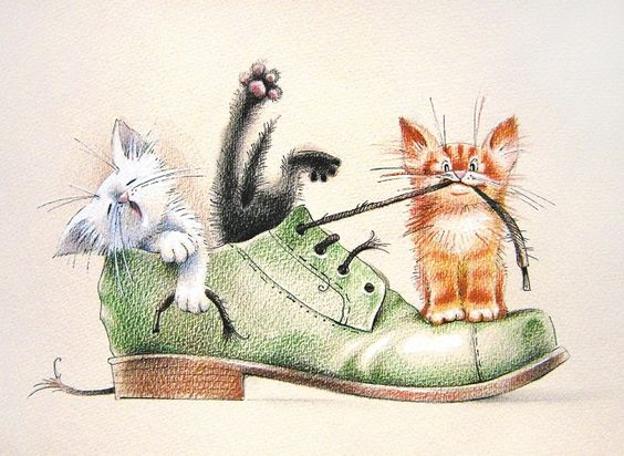 Kittens with shoes