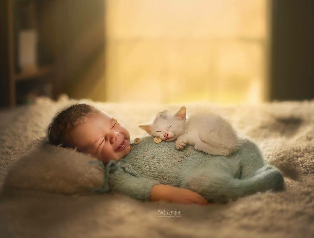 baby & kitten